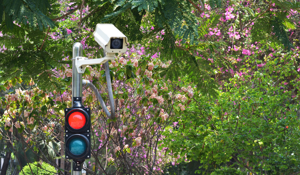 RED LIGHT CAMERA POLICY